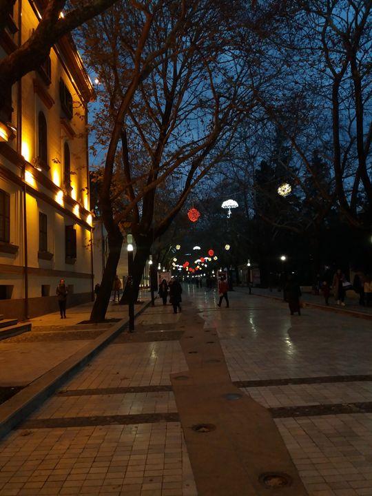 The avenue - Esterina