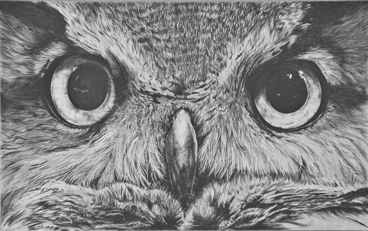 Great Horned Owl - Maddy Cat Illustrations