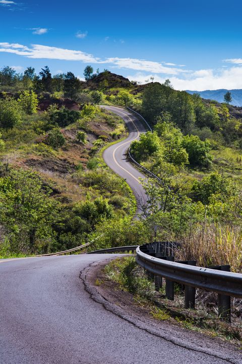 The Road To Greatness Kauai Hawaii - Kristin Greenwood