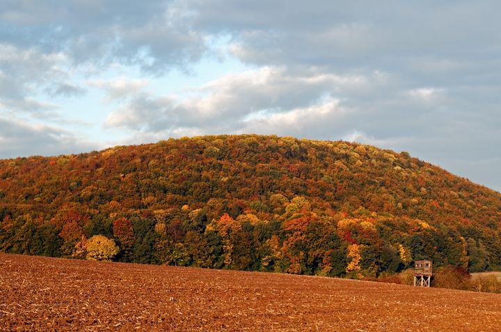 Thuringian Woods in Autumn - Kristin Greenwood