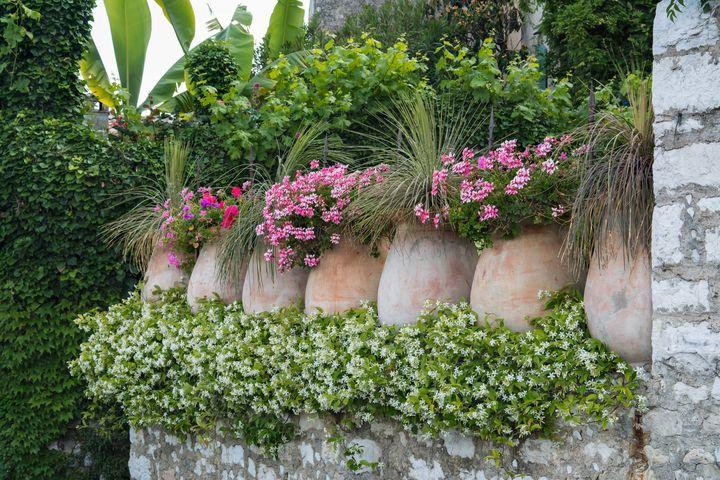 Flower pots Saint-Paul de Vence - Kristin Greenwood