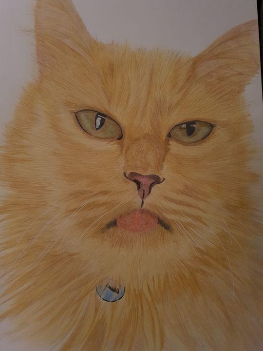 Cat - SLART