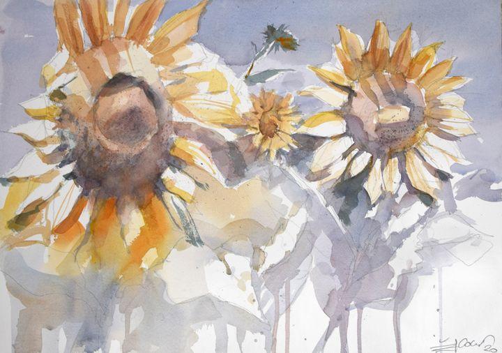 Sunflowers - Goran ŽIgolić Watercolors