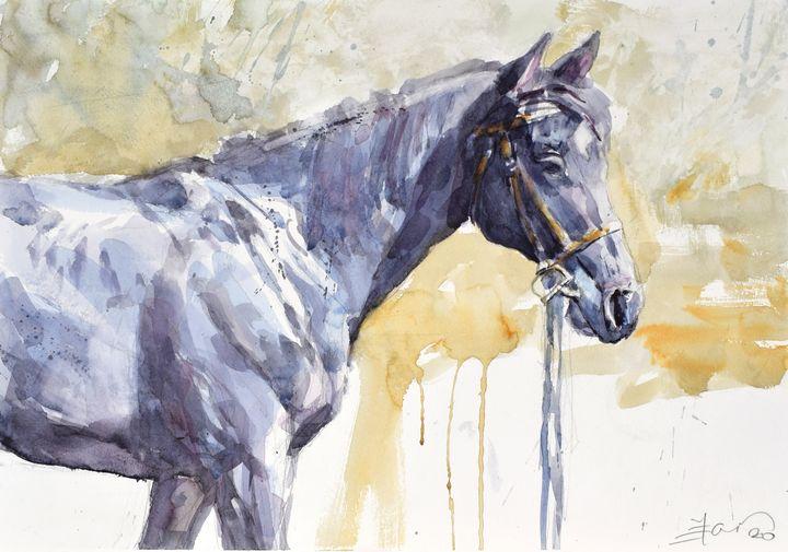 Black standing horse in light - Goran ŽIgolić Watercolors
