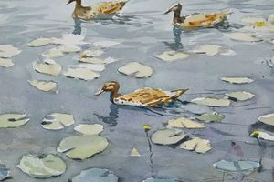 Ducks - Goran ŽIgolić Watercolors