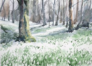 Woods full of snowdrops - Goran ŽIgolić Watercolors