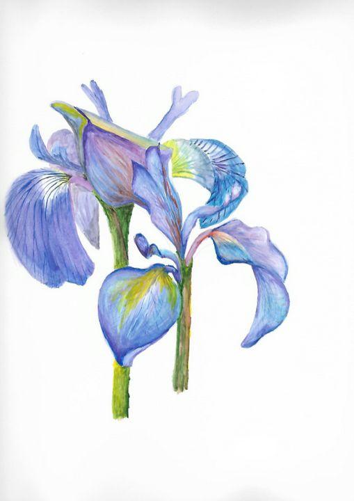 blue flowers - ArtistBear