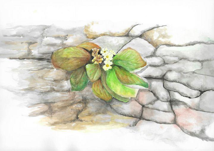 flowers on the rock - ArtistBear