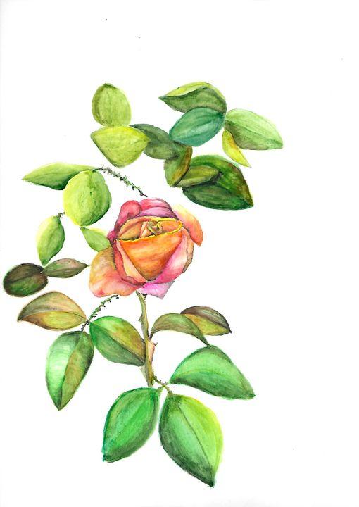 Rose - ArtistBear