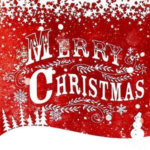 Merry Christmas Snow Bank