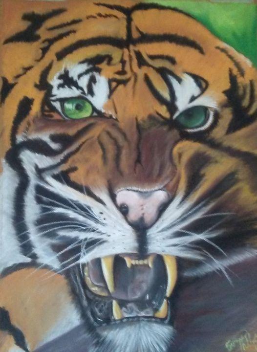 Tiger - E.J.Phillips