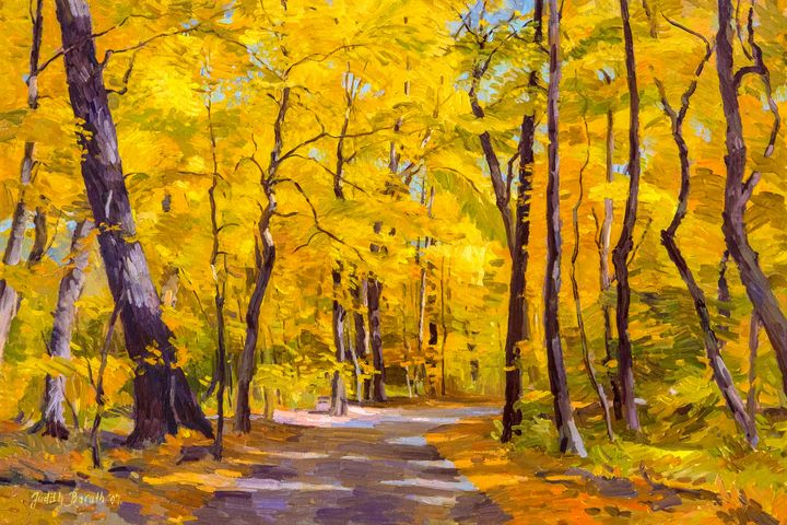 Ash Trees at Fall in the Morton Arbo - Judith Barath Arts