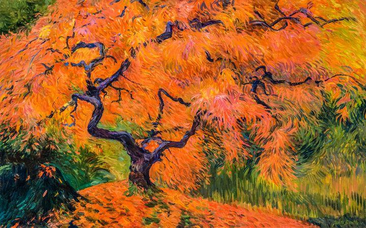 Japanese Maple Tree - Judith Barath Arts