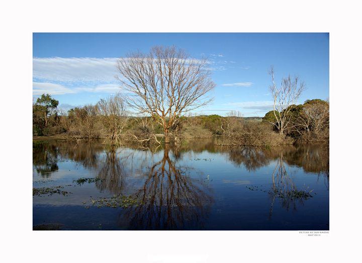 Aldinga pond - Aldinga Photos Gallery