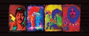 Beatles Psychedelia