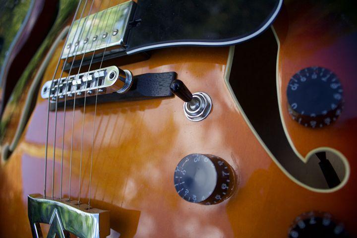 Blues Guitar - Rico Niezen