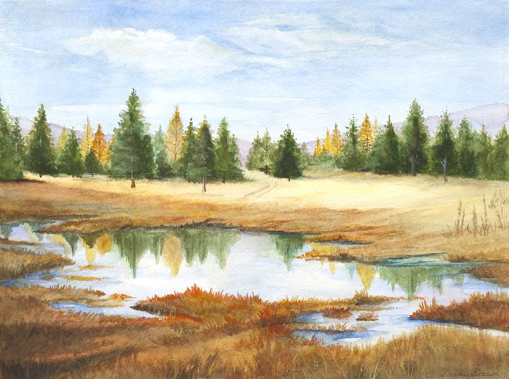 Montana headwaters - Paintings by Diana V Brown