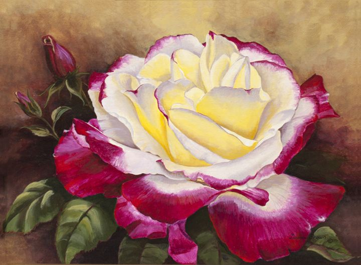 My Rose - Paintings by Diana V Brown