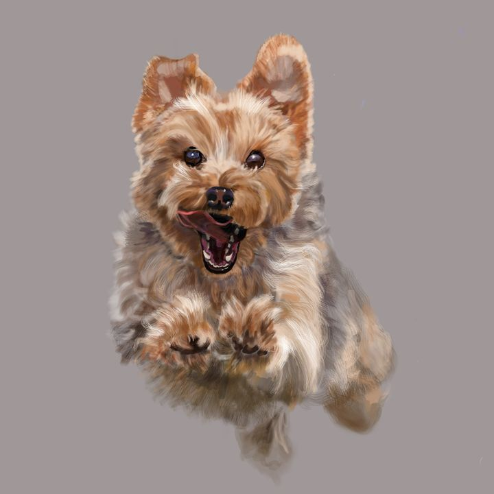 Cairn Terrier Airborne - Dogone Art