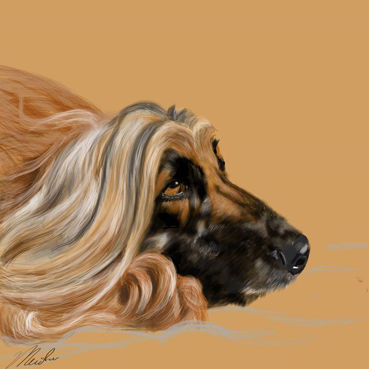 Afghan Hound - Dogone Art