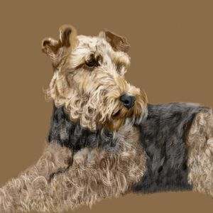 Airedale Terrier - Dogone Art