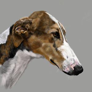 Greyhound - Dogone Art