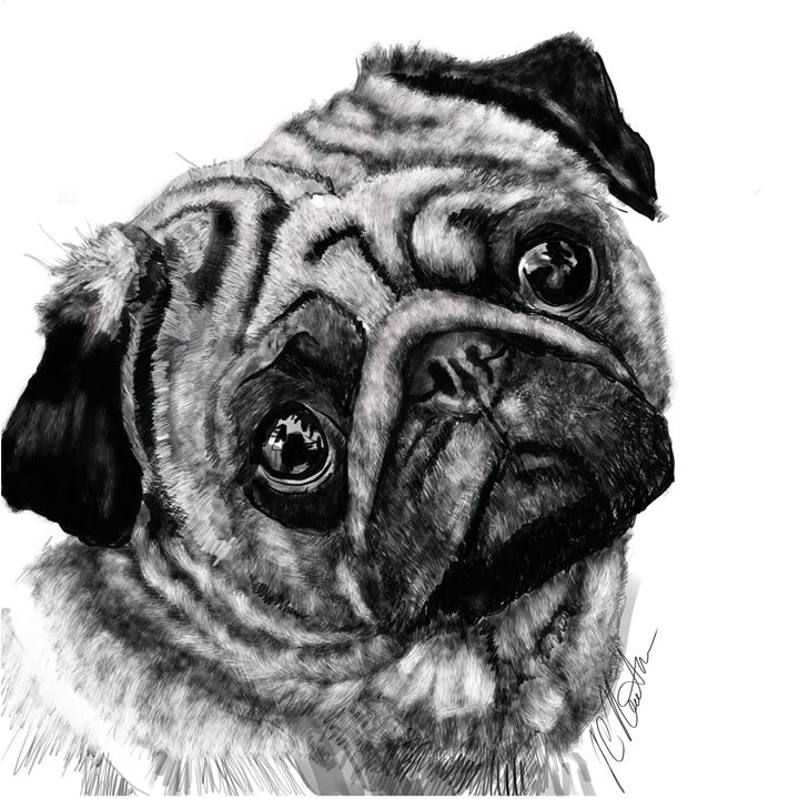 Pug - Dogone Art