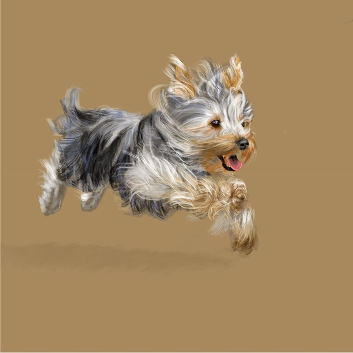 Yorkshire Terrier called Joy - Dogone Art