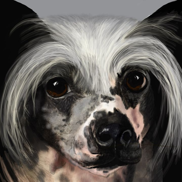 Chinese crested - Dogone Art