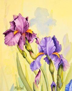 Iris Purple and Blue