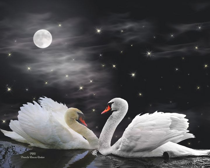 Moonlight Swans - Pamula Reeves-Barker Art