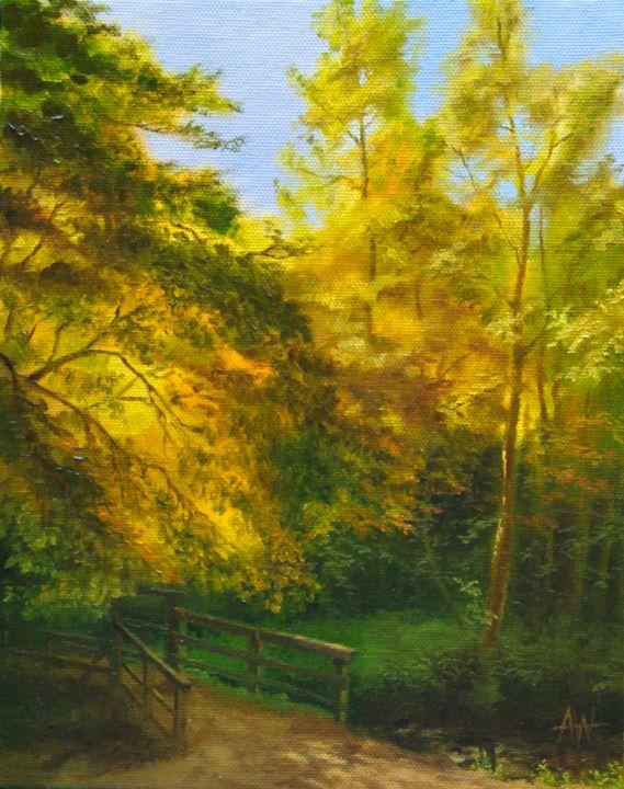 Sunlight near Falling Foss - Antony Wootten