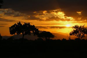 Sunrise on landscape