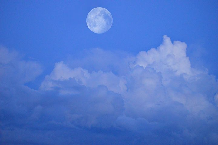 Full Moon - Rebecca J. Frank
