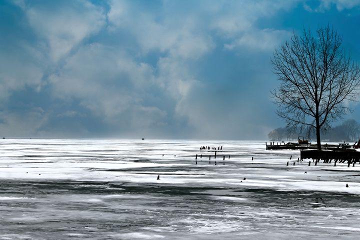 Frozen Lake - Rebecca J. Frank
