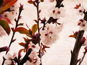 Grape Tree Flower