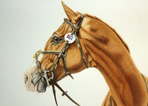 The Eventer - Elizabeth Llewellyn Art