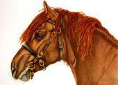 Elizabeth Llewellyn Art