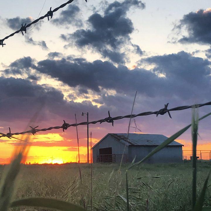 Barn At Sunset - Corey Browne
