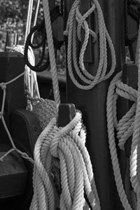 In Knots black and white