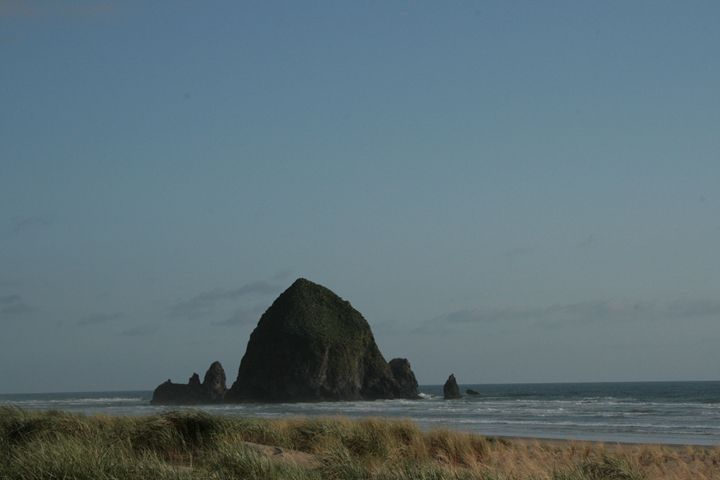 Canon Beach - Vanilla Moon Studio