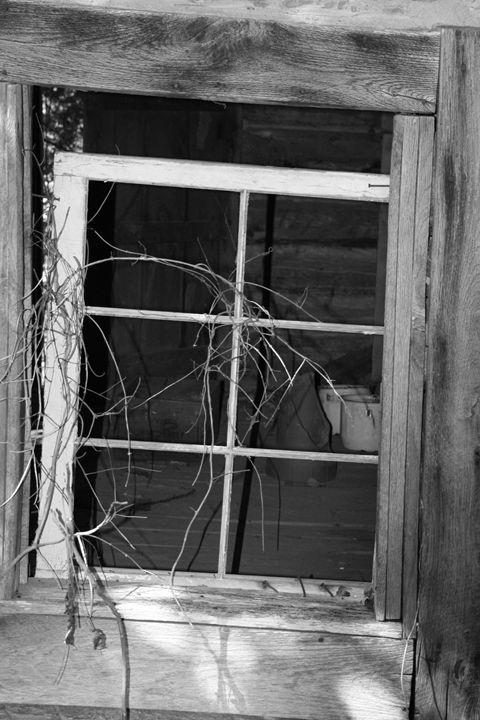 Abandoned - Vanilla Moon Studio