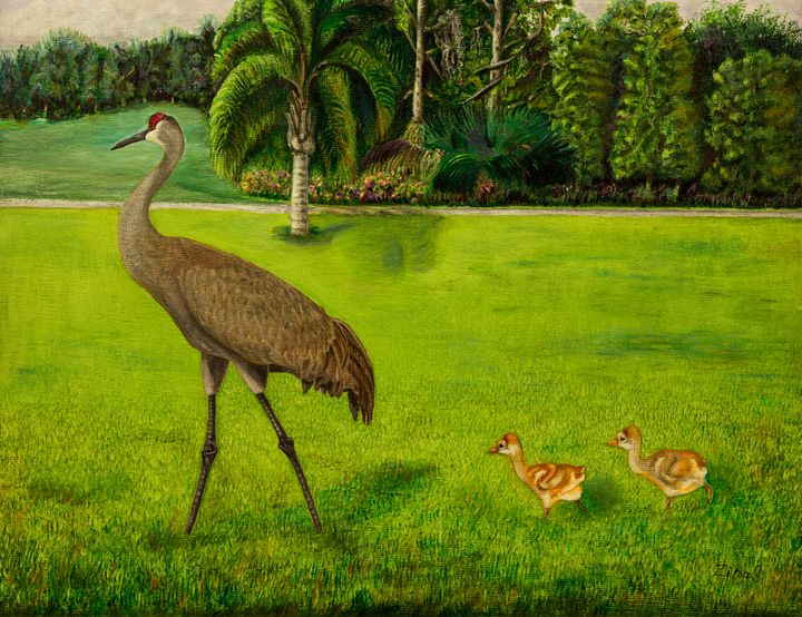 Painted Sandhill crane with chicks - Painting Art by Zina S