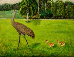 Painted Sandhill crane with chicks