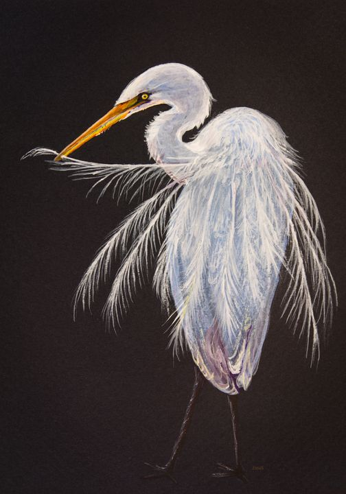 Great egret - Painting Art by Zina S