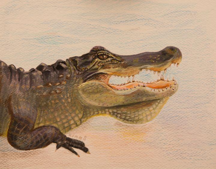 Alligator art - Painting Art by Zina S