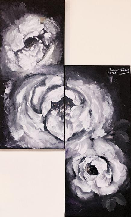 White roses - Alina Tanase