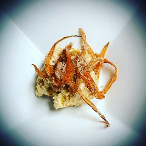 Spiced  Carrot Ice Cream