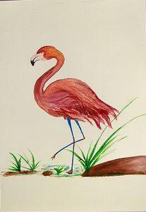 Bird#dedication#patience#focus