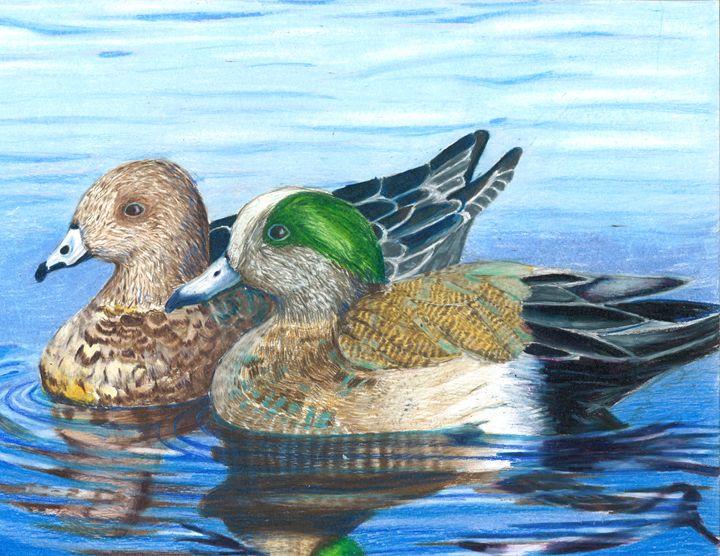 Ducks 2014 - Gabby Heller